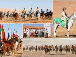 Chantilly  Morocco