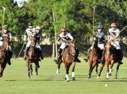 Houston Polo Club SPRING POLO SCHOOL STARTS TOMORROW! SIGN UP NOW!